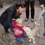 Kennenlernen von Hund und Kind