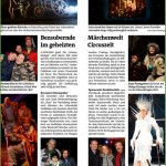 Beitrag im Bezirksblatt
